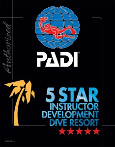 5 Star IDDResort