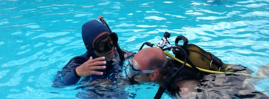 PADI professionnal experienced bilingual french english diving instructor